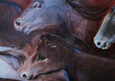 harde-20-chevaux-detail-4
