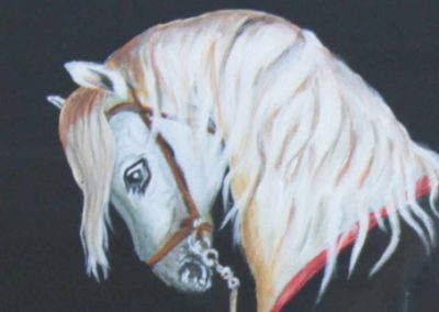 Cheval-blanc-detail-1