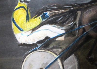 Driver-cheval-attele-detail-2
