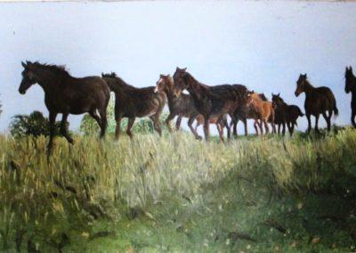 Harde-dix-chevaux