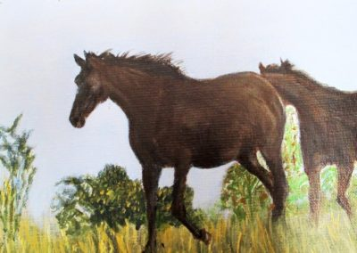 Harde-dix-chevaux-detail-1