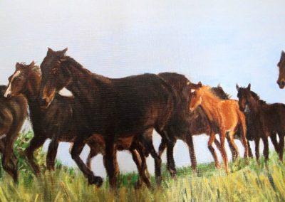 Harde-dix-chevaux-detail-2