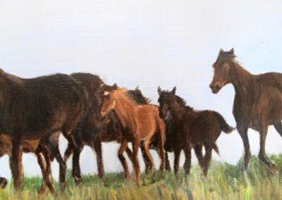 Harde-dix-chevaux-detail-3