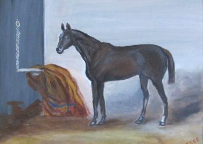 cheval-noir-et-couverture