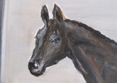 cheval-noir-et-couverture-detail1