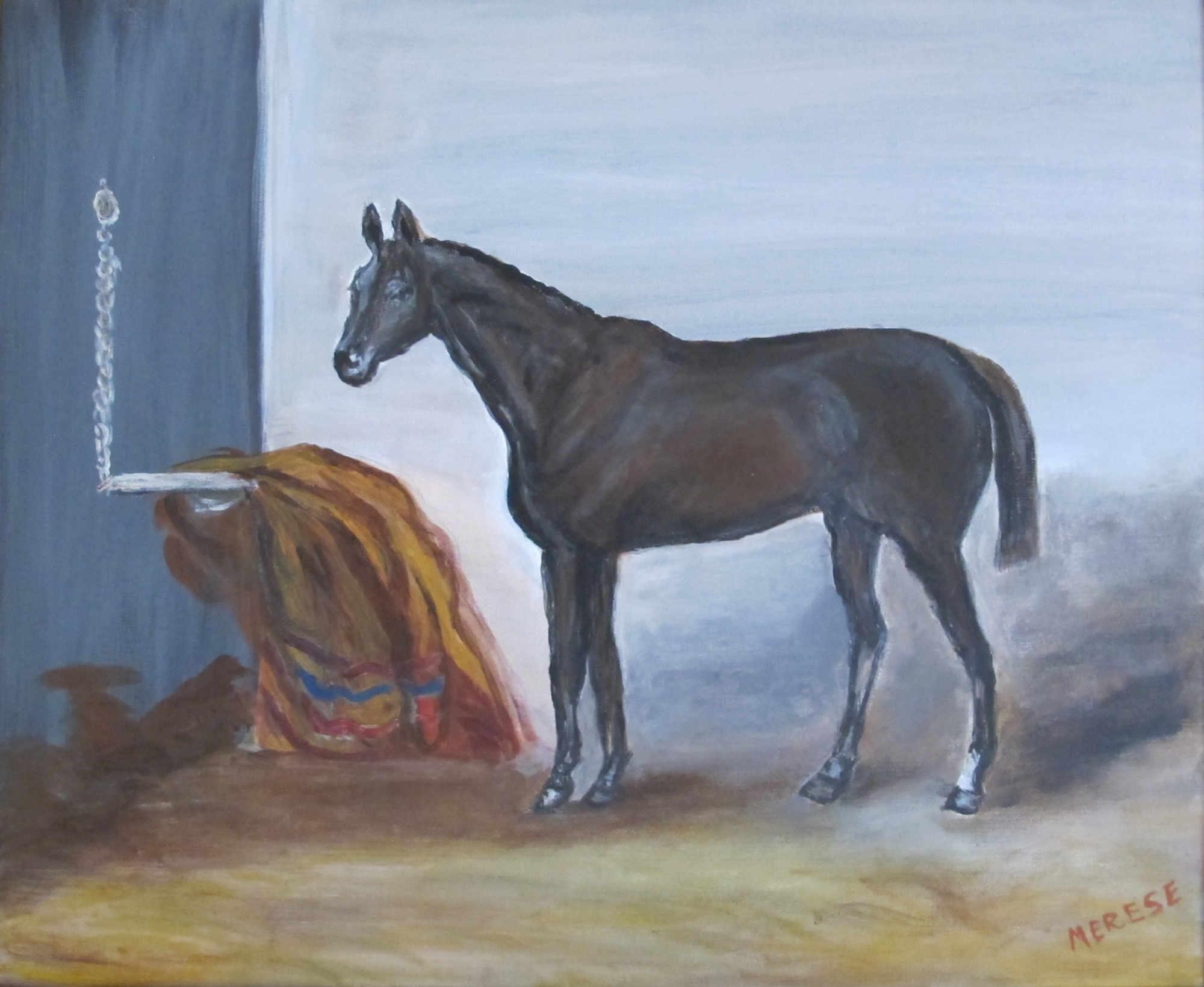Cheval noir à la couverture